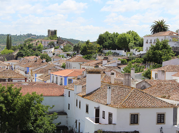 Terracotta-tiled-roofs-in-the-Medieval-walled-town-of-Obidos-2