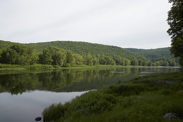 view delaware river