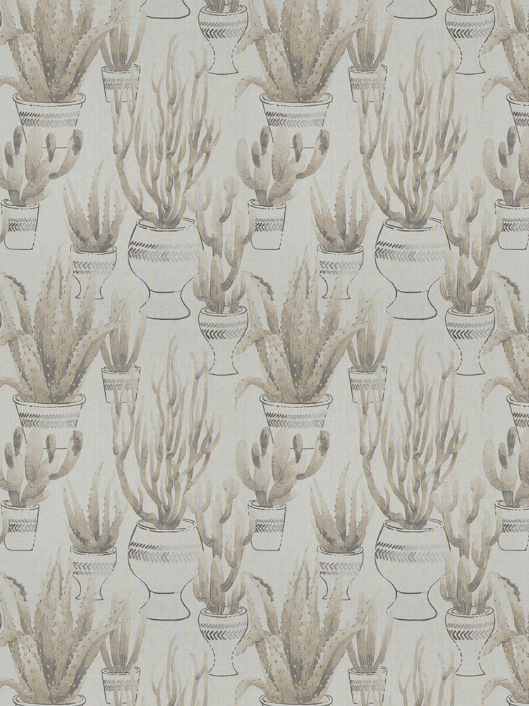 botanical wallpaper, cacti
